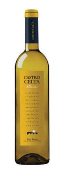 Castro Celta 2010